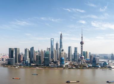 对上海一岁鸽的处理结果,你怎么看