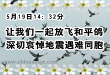 今天下午让我们一起为地震遇难同胞志哀放飞和平鸽