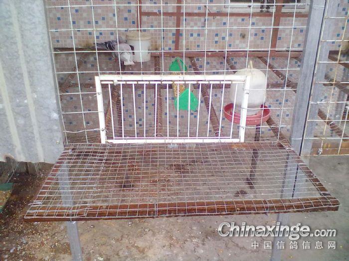 狗笼子设计图 狗笼设计图 狗笼设计图