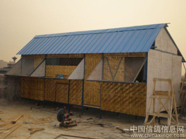 中国 赵勇/汪天民先生的鸽舍,图片打开来太漂亮了,老兄真有你的!