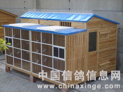 中国 鸽舍/鸽舍建造五要素/中国信鸽信息网...