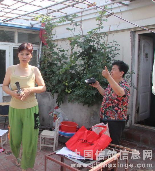 媳妇给力的北京孙宝海鸽舍(图)-中国信鸽信息网
