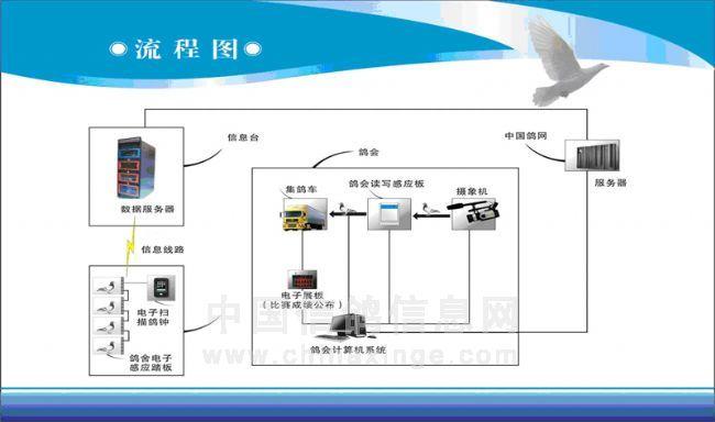 信鸽竞赛电子计时系统简称电子鸽钟,主要是采用RFID射频技术和计算机网络技术,通过给鸽子佩戴具有全球惟一识别码的可读写电子芯片,也有只读芯片的足环,但是,中鸽协明文规定信鸽比赛禁用只读芯片,在此不做叙述。芯片中储存了鸽子身份信息的比赛信息,通过扫描板将数据读出,经过掌中宝软件的处理,再通过无线或有线通讯系统传输给鸽会或者俱乐部计算机系统,最终实现对信鸽竞赛计时、环号身份、鸽主棚号等信息进行自动识别分析,实现比赛成绩统计和信鸽竞赛管理的信息化。