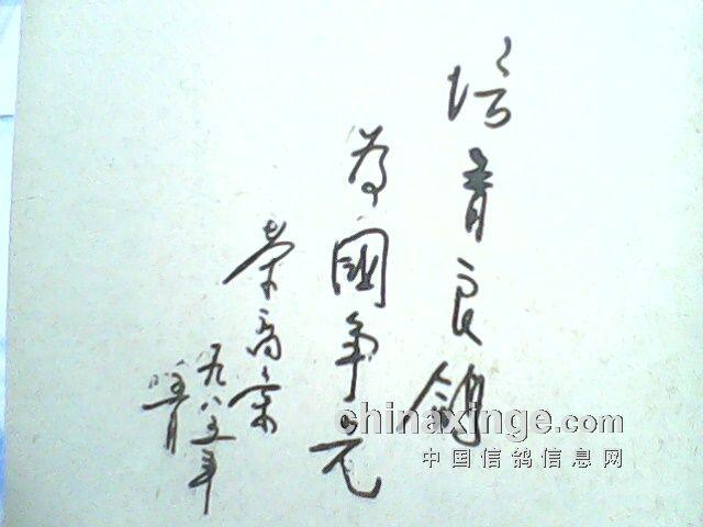 1985年 中华信鸽 杂志创刊号发行