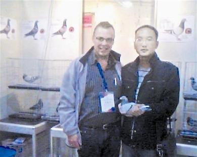 武汉大三男生卖信鸽 2年赚40万最贵一只10万元
