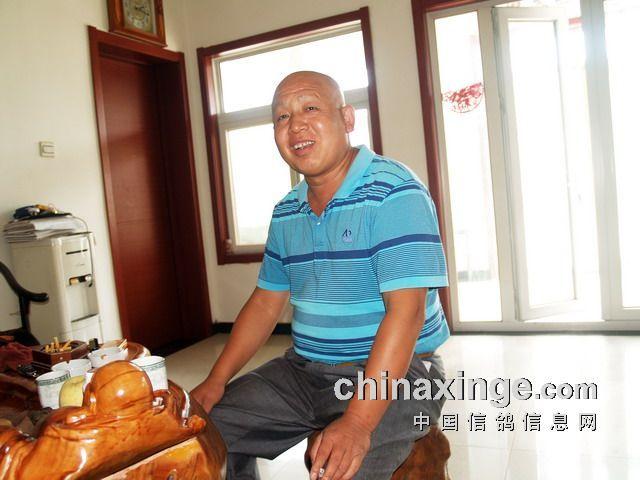 北京 王大亮/——致北京赛鸽强豪王大亮