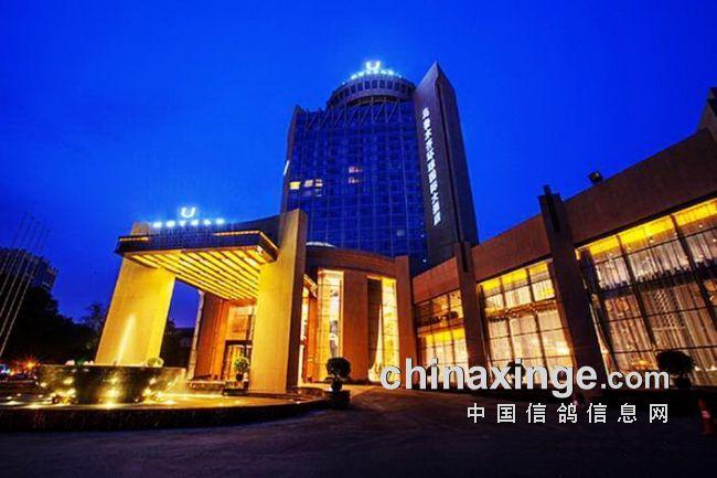 乌鲁木齐环球大酒店夜景图片